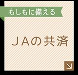 JAの共済