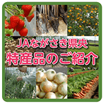 JAながさき県央の特産品紹介