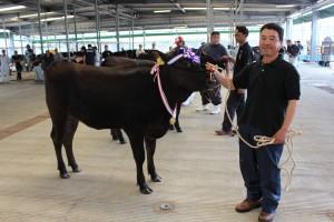 繁殖牛改良能力共進会2015