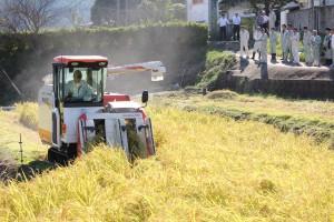 諫早産酒米収穫2015 (3)