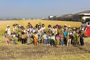 生協産直米「にこまる」稲刈り交流会 (10)